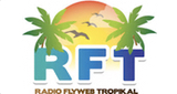 Flyweb Tropikal